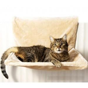 5f09f8c535b1b 305167 Top neopreno fitness efecto sauna y adelgazante talla S alla XXL
